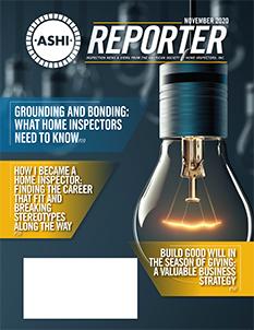 ASHI Reporter NOVEMBER 2020