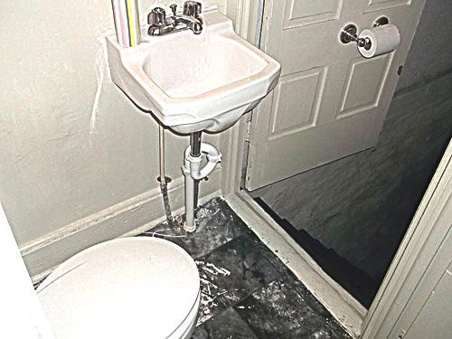 toiletsteps.jpg